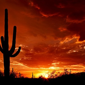 Places to See In Arizona