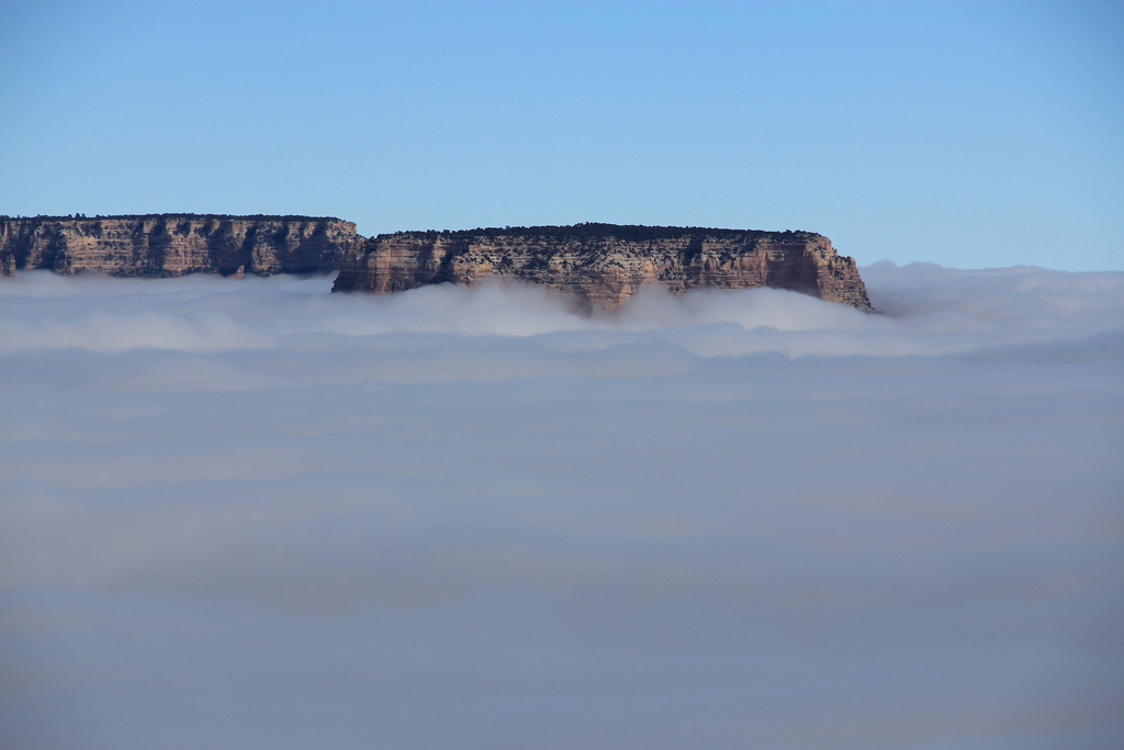 the-grand-canyon-in-fog