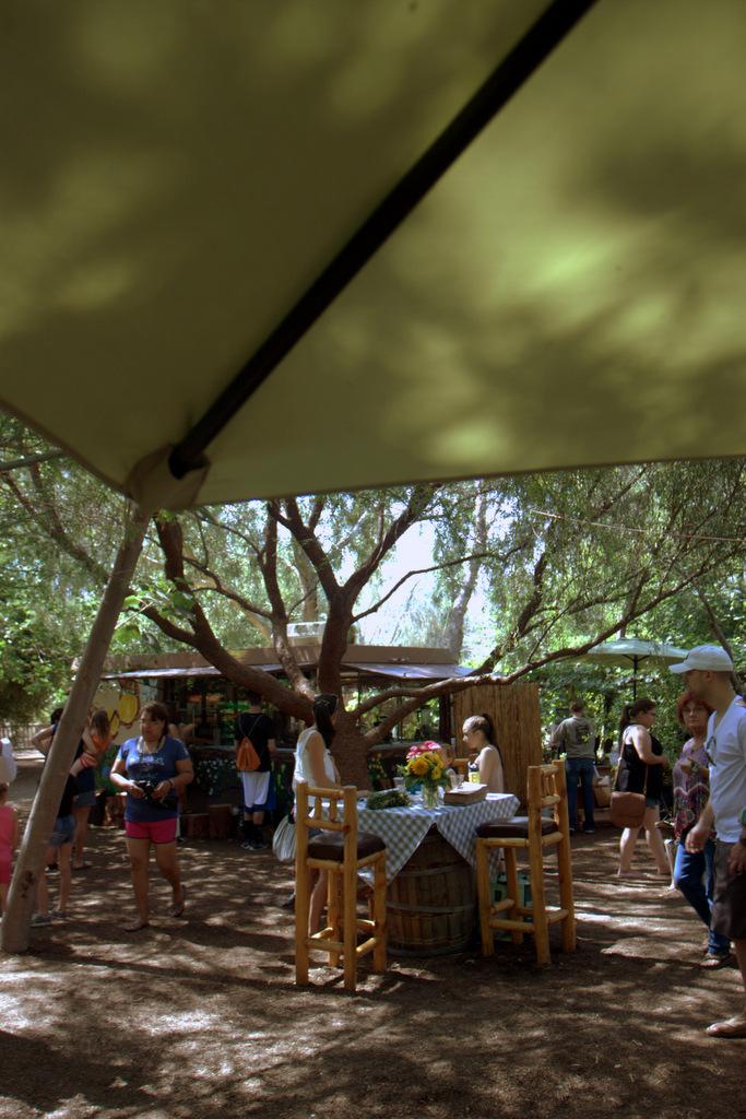 tent-singh-farms