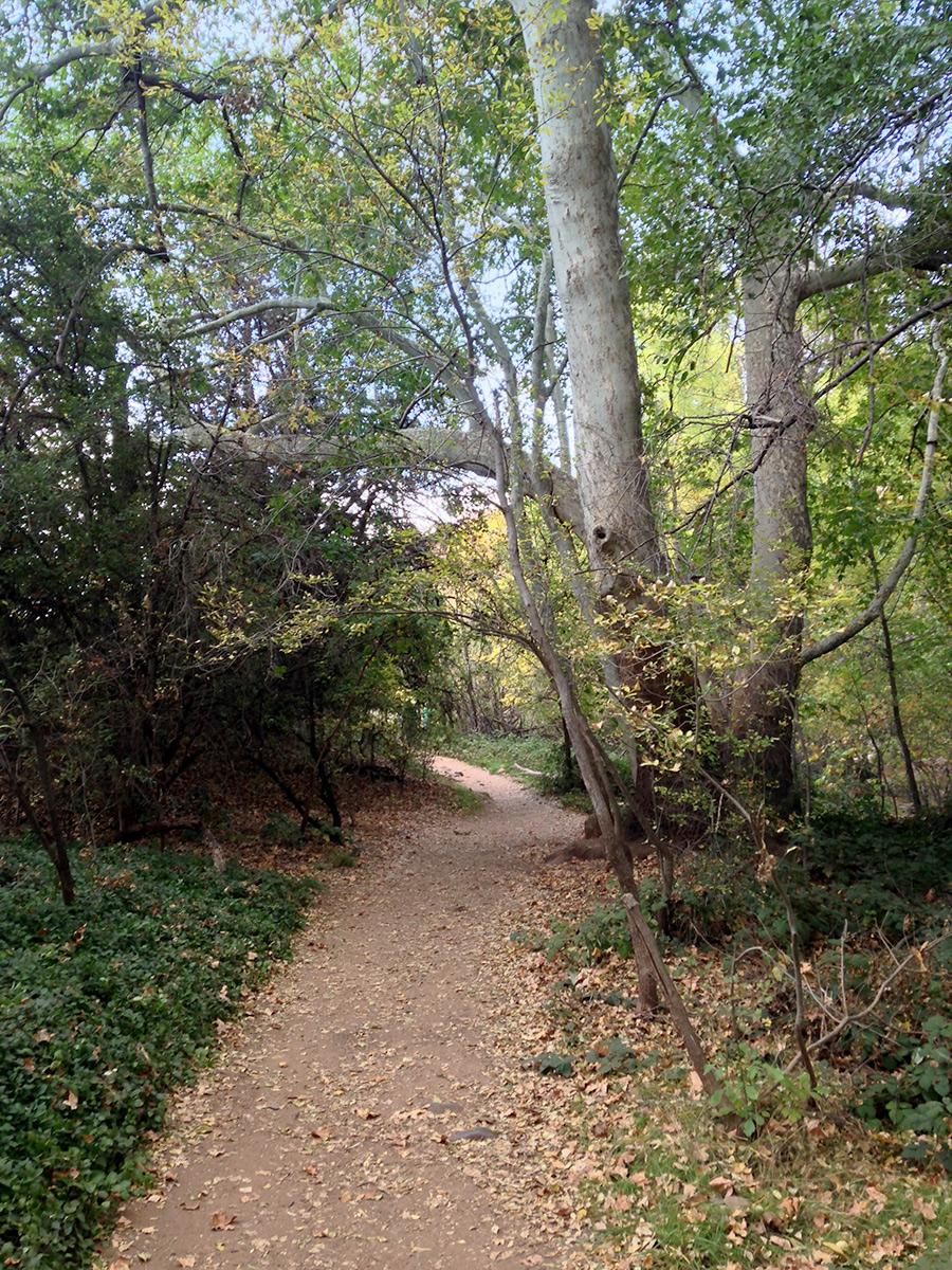 Red-Rock-Crossing-Hike