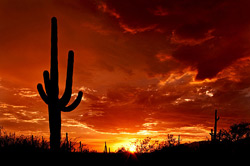 Visit Arizona for the best desert sunsets you'll ever experience! Things to do in Arizona