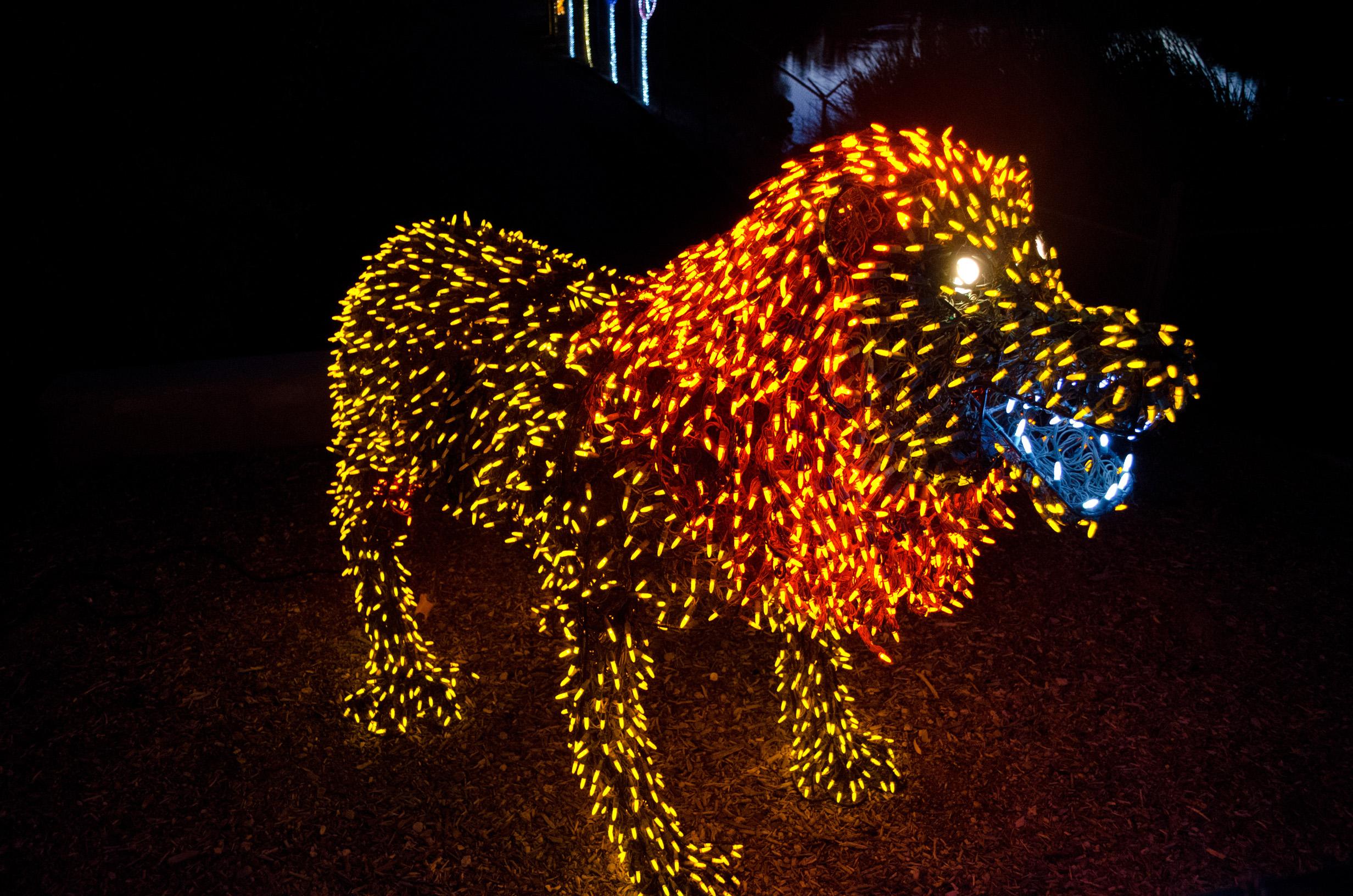 Phoenix Zoo - ZooLights 2013 - 43