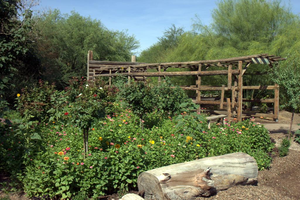 flowers-singh-farms