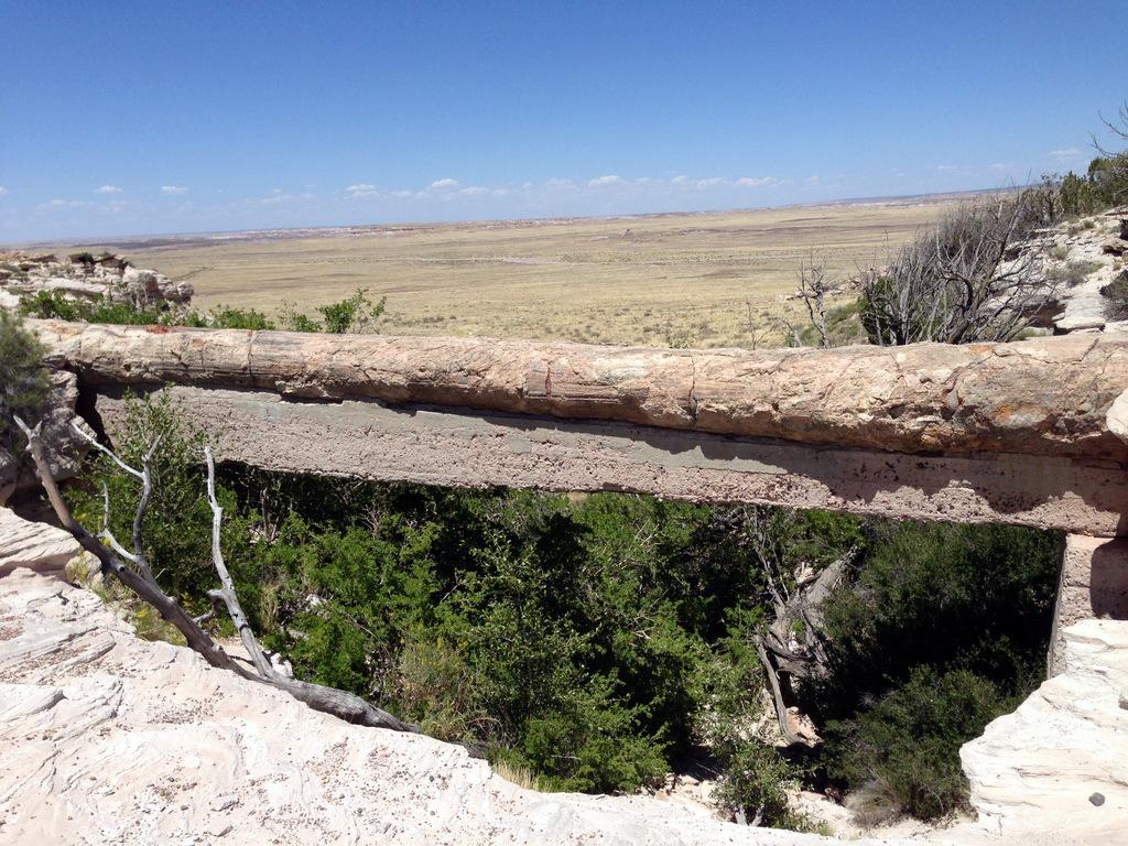 agate-bridge-petrified-forest