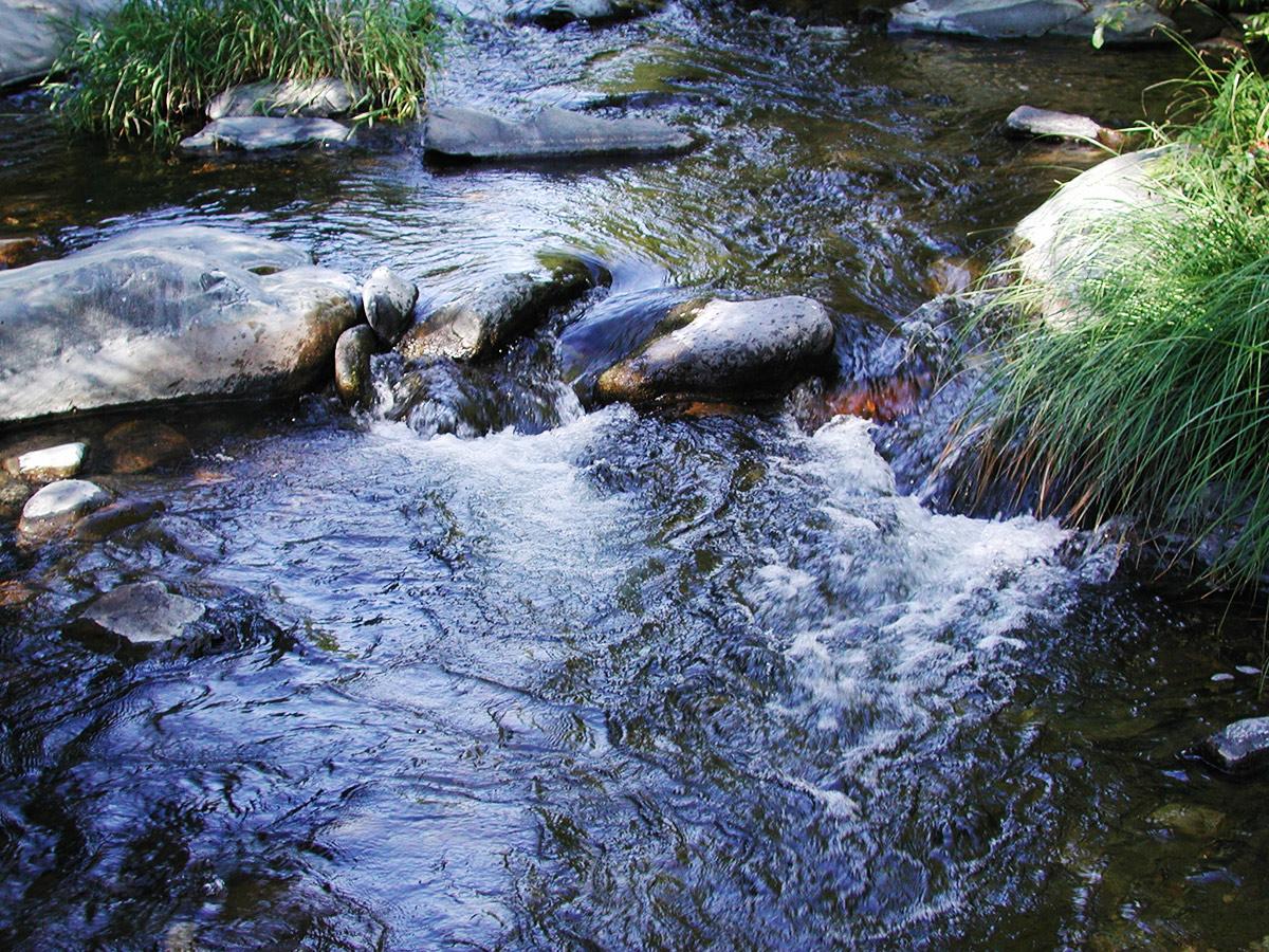 sedona-oak-creek-water